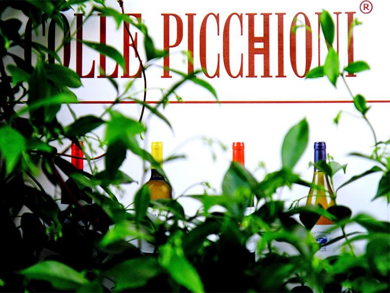 Colle Picchioni